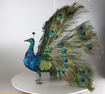 Peacock automaton, by Roullet & Decamps