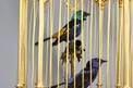 Museum-standard ormolu-bronze and Sevres-plaques double singing birds-in-cage, by Bontems